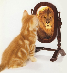 lion chat miroir.jpg